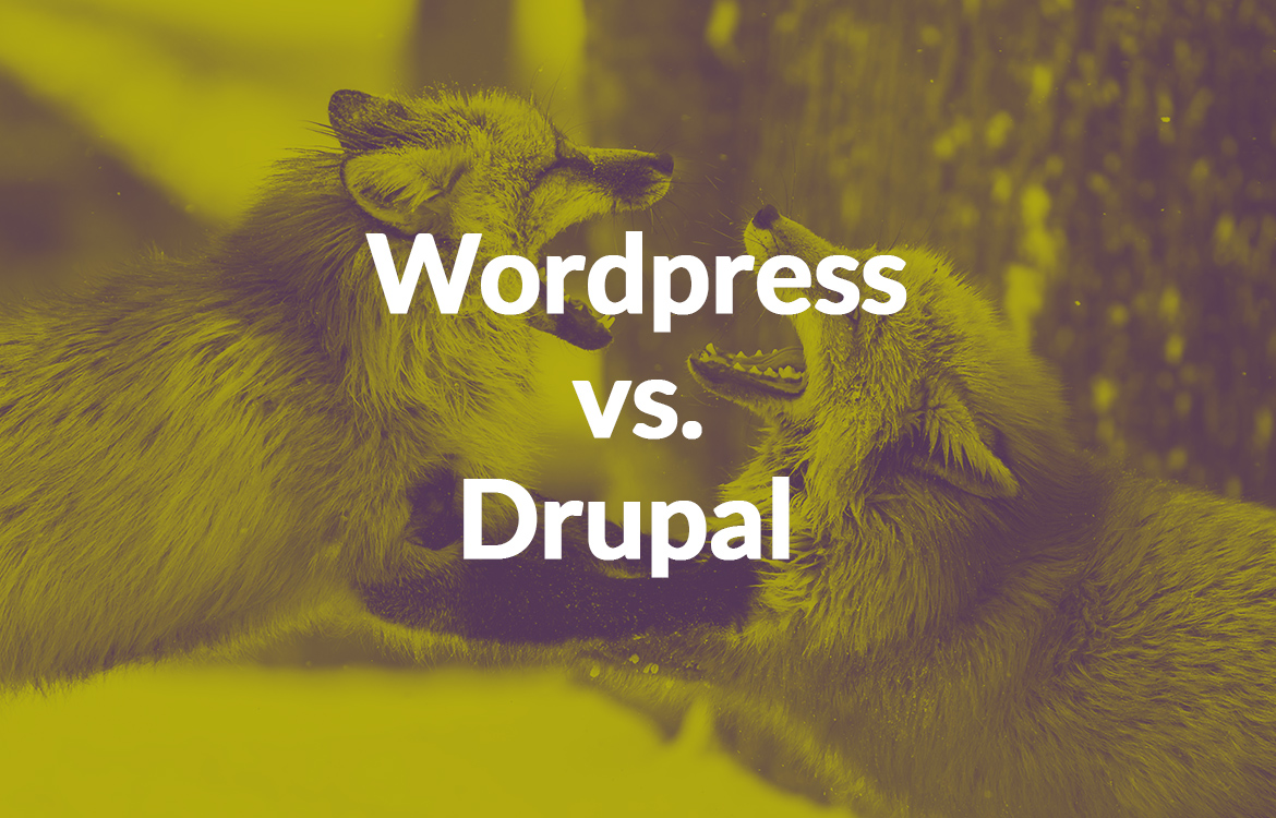 WordPress vs Drupal: The CMS Showdown