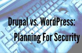 Drupal vs WordPress: Planning for Security