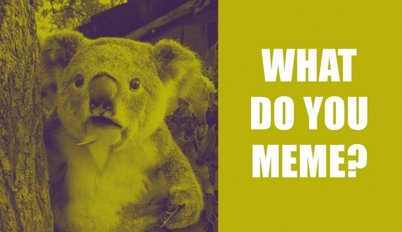 What Do You Meme? | Why Your Business Should Take Advantage of Internet Memes