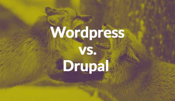 WordPress vs Drupal: The CMS Showdown